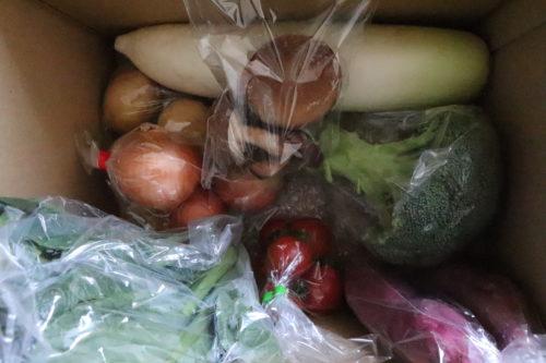 ふるさと納税野菜の定期便ブログ、奈半利町野菜セットの口コミは? 8