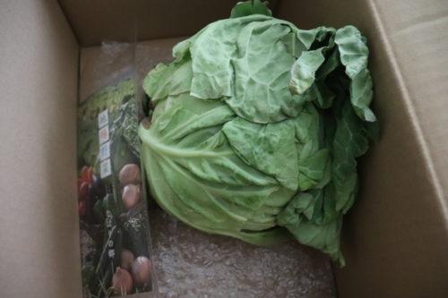 ふるさと納税野菜の定期便ブログ、奈半利町野菜セットの口コミは? 11