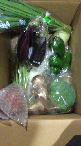 ふるさと納税野菜の定期便ブログ、奈半利町野菜セットの口コミは? 6