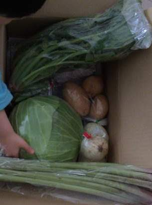 ふるさと納税で野菜のセット 松浦市の野菜と還元率アップの裏技 13