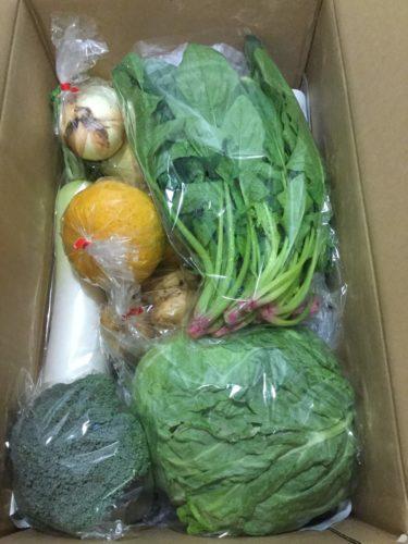 ふるさと納税で野菜のセット 松浦市の野菜と還元率アップの裏技 6