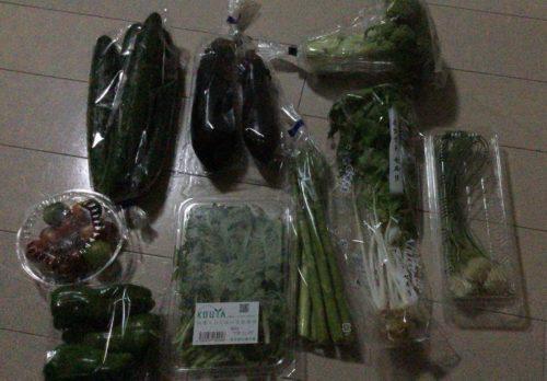 岩手県花巻市ふるさと納税 5000円の野菜セット定期便レビュー 6
