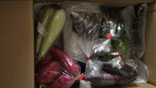 ふるさと納税 長崎県松浦市の「季節の野菜詰め合わせ」セット