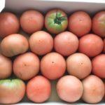 島原市のふるさと納税野菜セット!楽天で人気の野菜セットブログレビュー 13