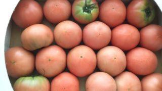 トマトジュースの栄養!リコピンや朝夜おすすめの飲み方とレシピ 1