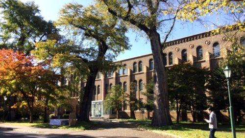 北海道大学 博物館 紅葉