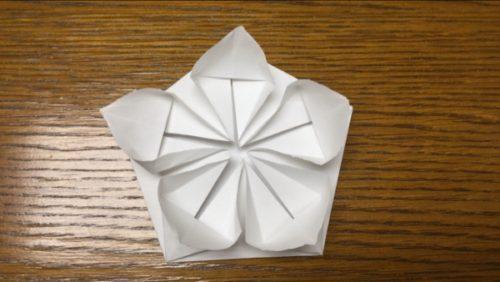 梅の花 立体的 折り方 解説