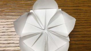 桃の花の折り紙折り方 立体的に!梅の花にも:ひな祭り飾り折り紙 1