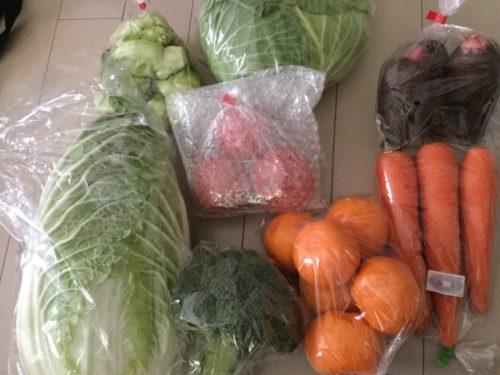 ふるさと納税野菜定期便 松浦市の定期便 2020年